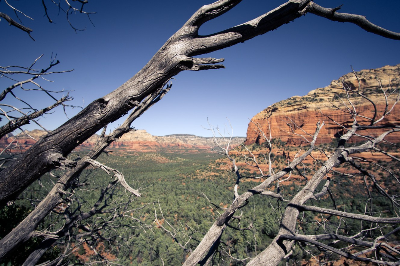 Arizona ⎮ Oak Creek Canyon