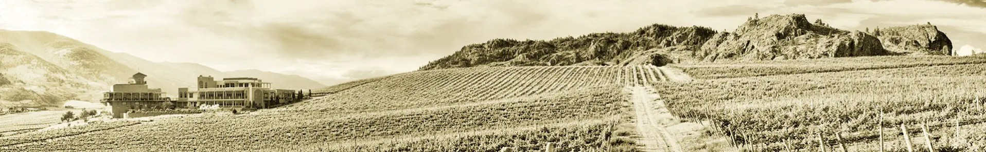 Panoramic photograph of Burrowing Owl Estate Winery in The Okanagan Valley, Oliver, BC, Canada