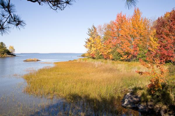 Lake Nipissing Orange
