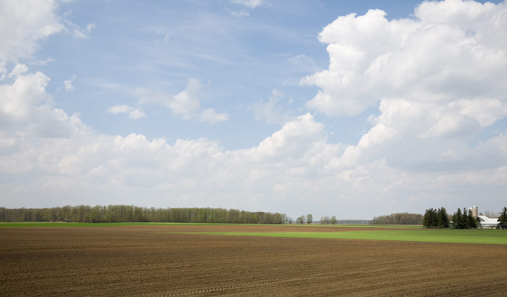 Farmland Near Conestogo