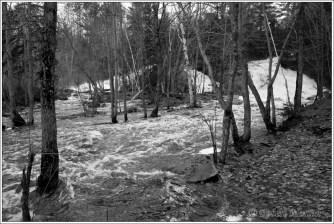 Duchesnay Floods