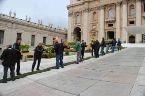 FIORI DALL'OLANDA PER LA PASQUA A ROMA (10)