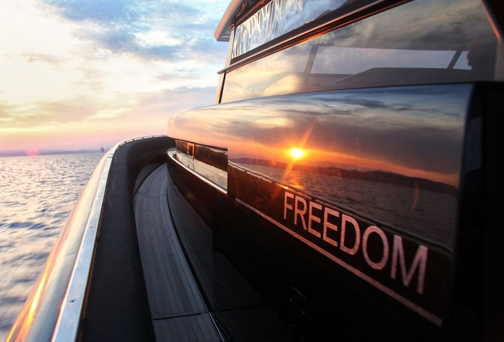 Freedom at sunset