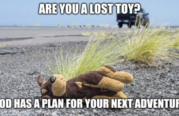 June 22 – Are You A Lost Toy?