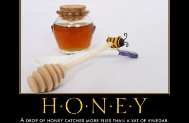 June 14 – Honey or Vinegar? What Do You Prefer?