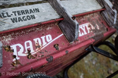 My weathered Radio Flyer.