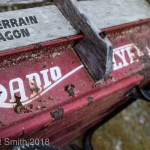 A Photo a Week Challenge: Weathered