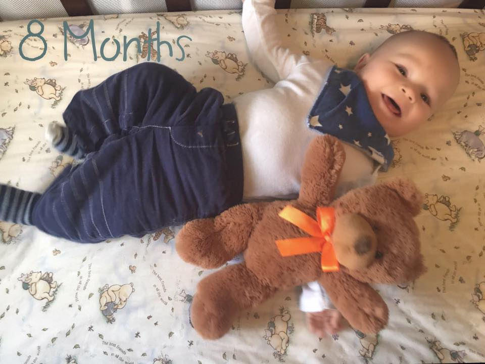 Asher is 8 months old
