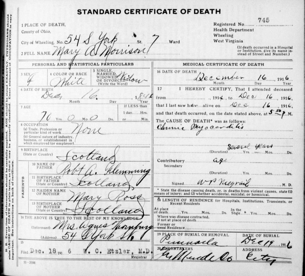Stoy Family Genealogy