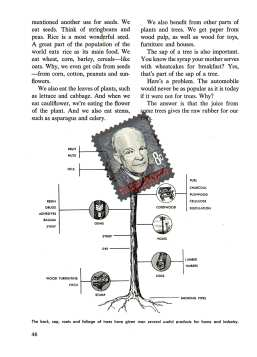 eisenhower-approved-beginning-science-parody-book-robert-what-49