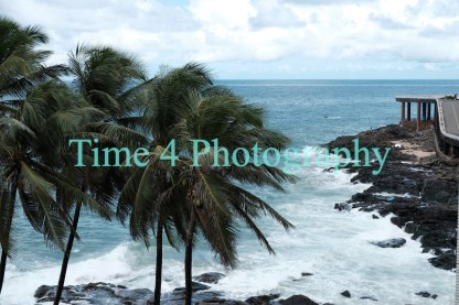 Palm trees in Salvador, Brazil, and in the background the sea waves can be seen crashing against coastal rocks. The sky is cloudy.