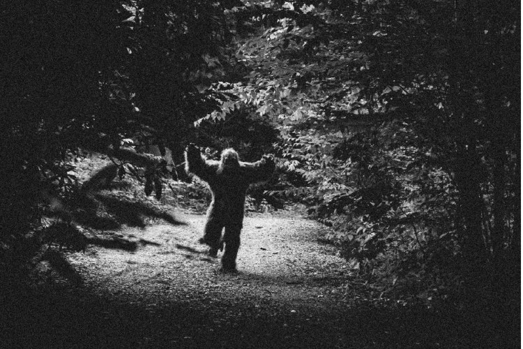 6 lessons I learned from #BigFoot