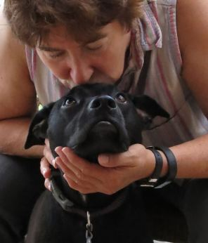 Robin Botie of Ithaca, New York, photographs Edie The Dog looking up lovingly at the one who loves her.