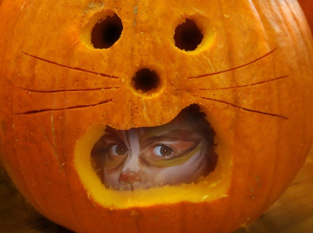 Robin Botie of Ithaca, New York, Photoshops her daughter's face painted as a cat, into the mouth of a carved pumpkin.