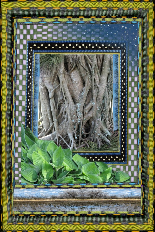 Robin Botie of Ithaca, New York, photoshops borders around a banyan tree with hugging, intertwining branches.