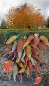 Robin Botie of Ithaca, New York, Photoshops produce and trees reflected in Cayuga Lake at the Ithaca Farmers' Market.