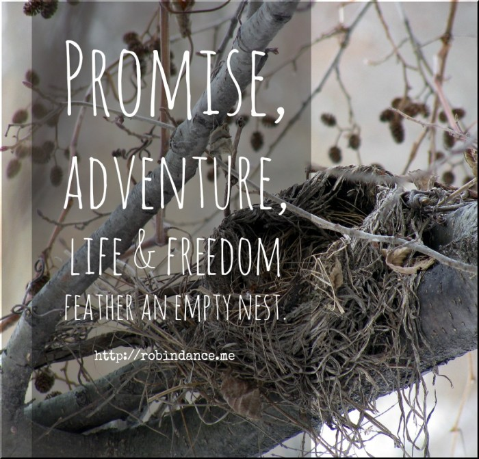 Encouraging empty nest quote by Robin Dance