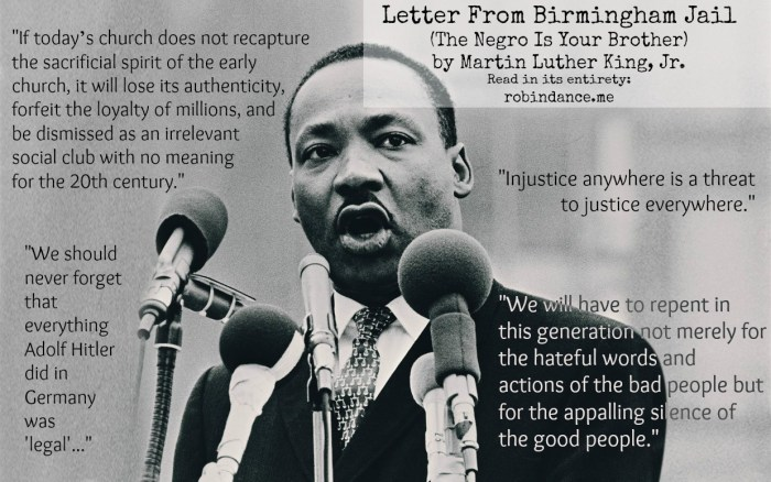 MLK Letter from Birmingham Jail quotes