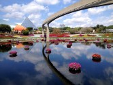 Epcot is beautiful. The Monorail goes right through it and is a great transportation option between Epcot and Magic Kingdom.