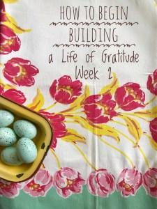 Life of Gratitude Week 2