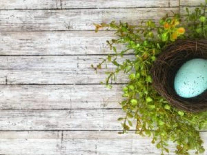 Farmhouse Nest