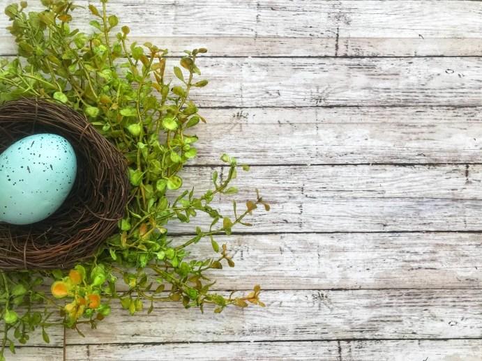 Grateful Nest Left