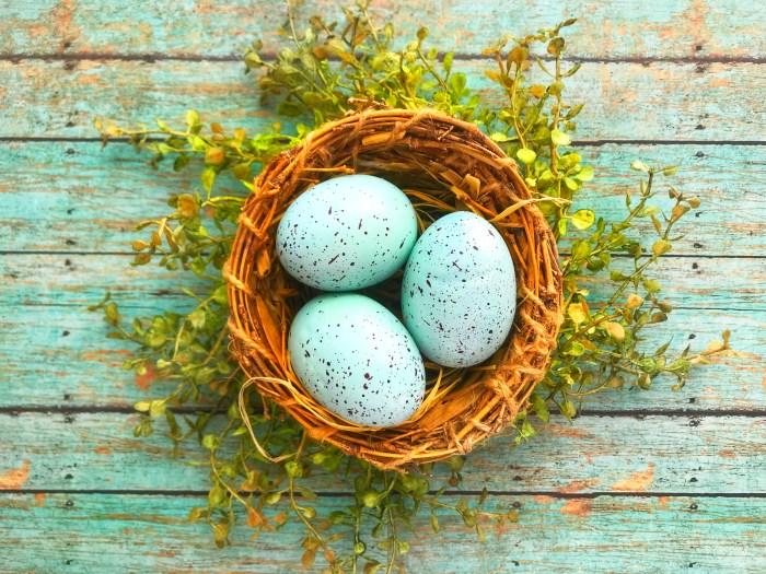 Turquoise Center Nest