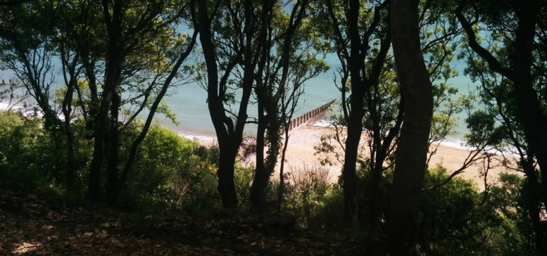 Eastbourne beach from south cliff
