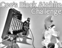 Cee's Black and White Photo Challenge Badge
