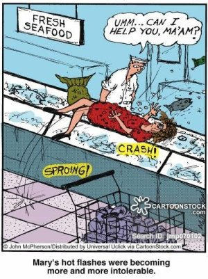 Mary's hot flashes were becoming more and more intolerable. source: cartoonstock.com