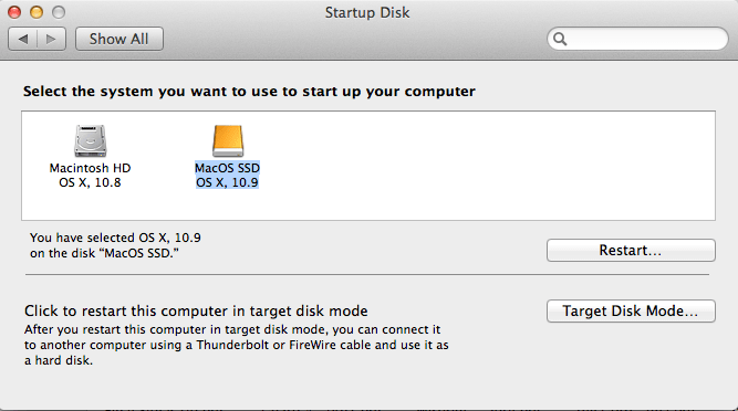 Mac OS X Startip Disk Preferences Window