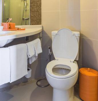 toilet repair plumbing services allentown pa
