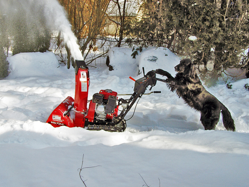 Sudbury's Best Snow Blower Tune-up Service
