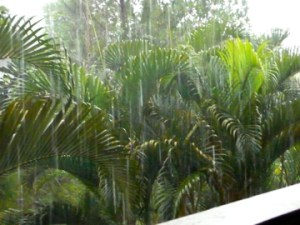 sheets of rain in Ubud, Bali