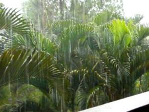 sheets of rain in Ubud, Bali