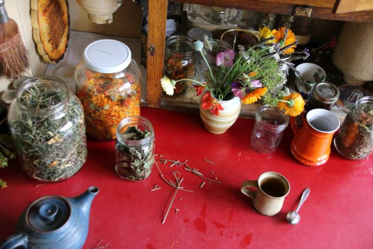 herblife