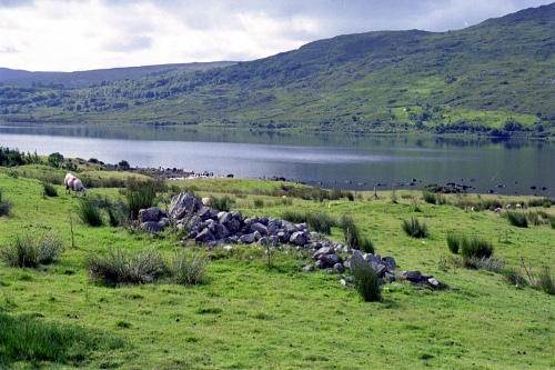 Countryside in the Connemara District of Western Ireland