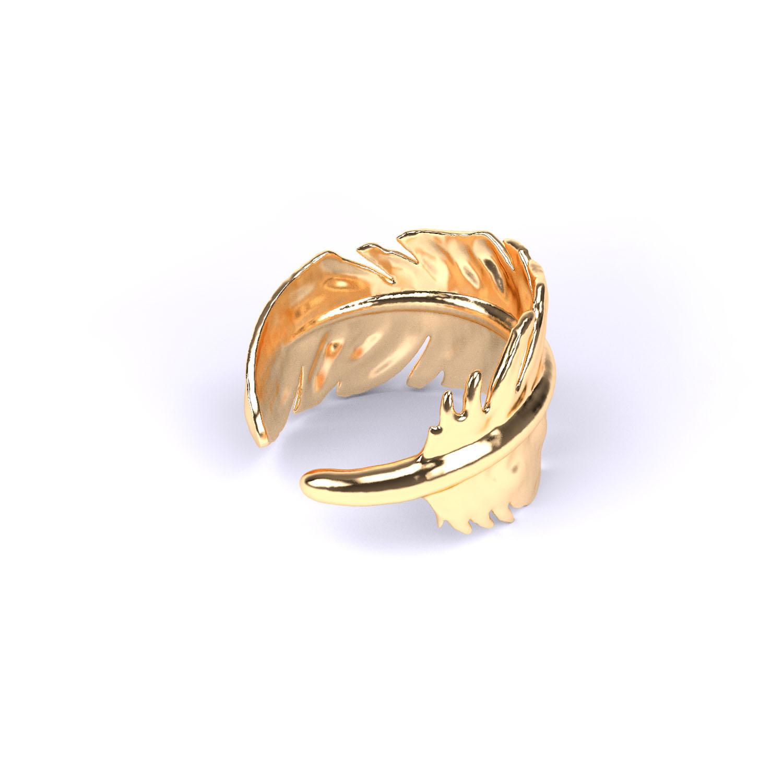 Ring 'Veer'