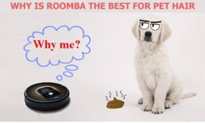 why roomba the best