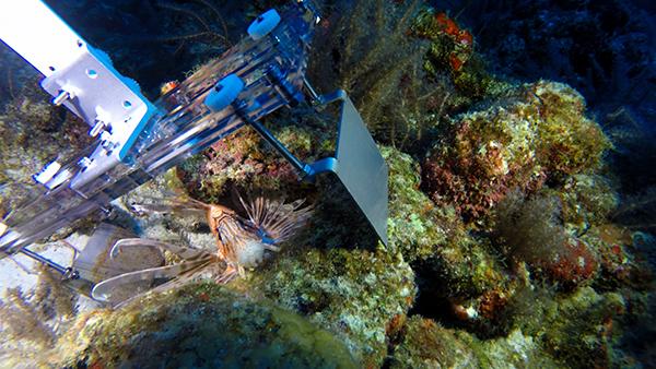 Robots planning to defend world's oceans against alien invasion