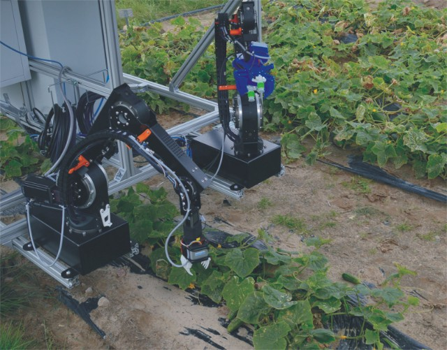 Fraunhofer demonstrates lightweight robot that can harvest cucumbers