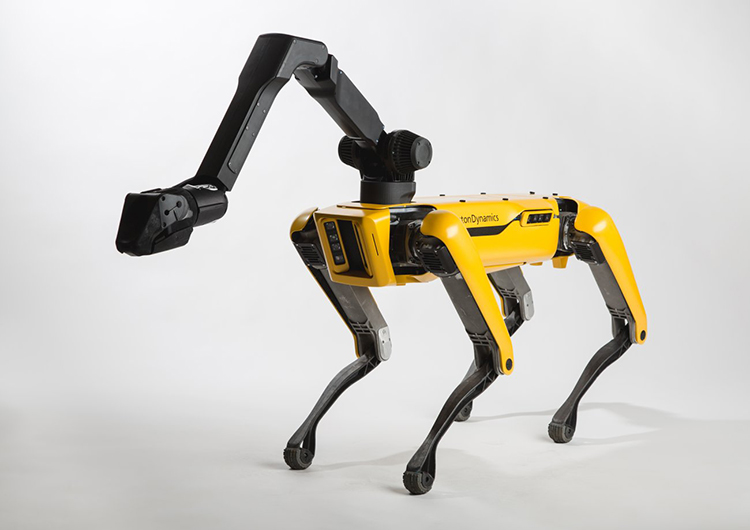 Boston Dynamics prepares to unleash at least 1,000 of its robot dogs every year until the end of the world