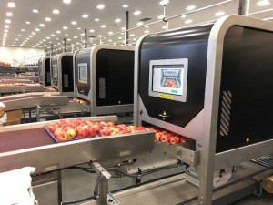 Robotics Plus - Aporo apple packer - 2 copy