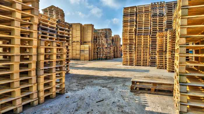 piles-euro-type-cargo-pallets-recycling-standard-pallet-size-ss-Featured-.jpg