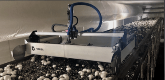 REEST: Revolutionizing The Global Food System With Robot Harvested Shrooms