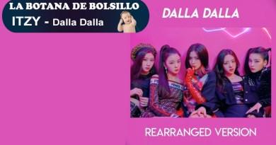 La Botana de Bolsillo Robotto.mx