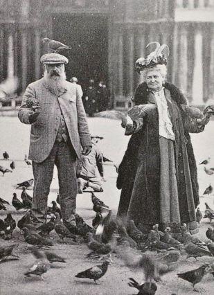 Państwo Monetowie gołębi się nie boją