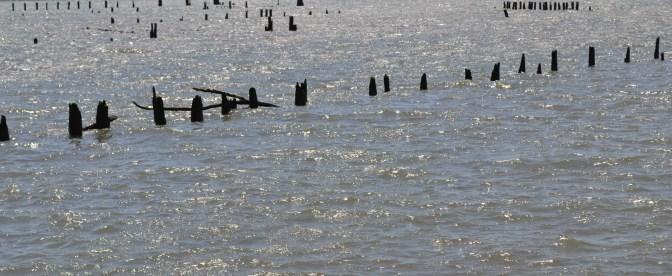 Old Pier Remnants