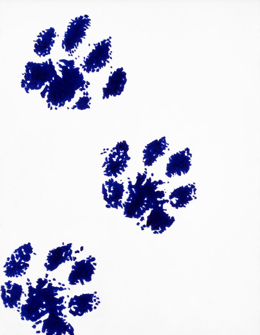 Rob Scholte – Blue period (14)