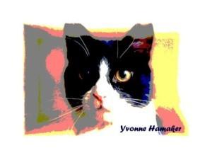 Yvonne Hamaker - Casper